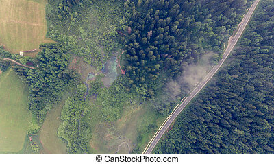 Aerial view of a forest with lake.