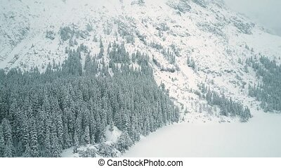 Aerial view of a highland forest in falling snow