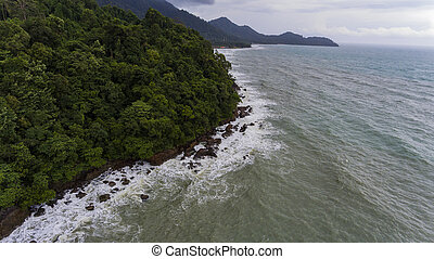 Aerial view of a rocky and green beach shore.
