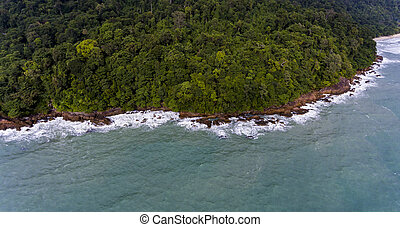 Aerial view of a rocky and green beach shore with amazing blue water