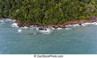 Aerial view of a rocky and green beach shore with blue water