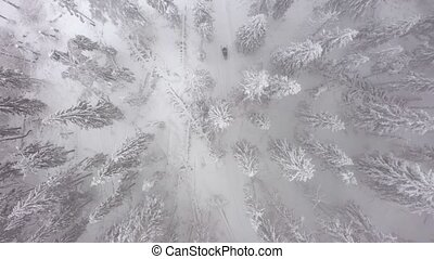 Aerial view of a snowmobile that rides in the middle of a...