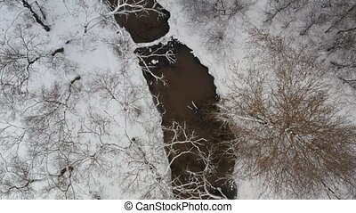 Aerial view of a winter small river surrounded by trees and...