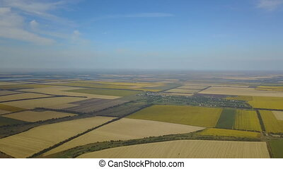 Aerial View Of Agricultural Fields Crops Harvest, Yellow...
