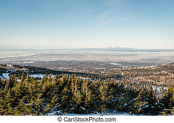 Aerial view of Anchorage