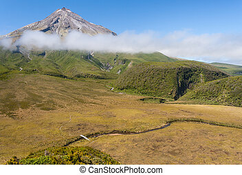 aerial view of ancient swamp near Mount Taranaki in Egmont National Park, New Zealand