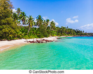 Aerial view of beautiful beach and sea with coconut palm tree