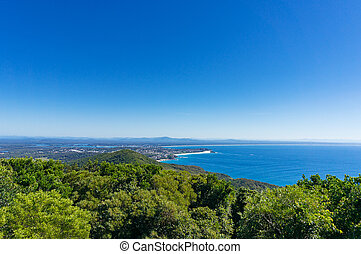 Aerial view of beautiful coastal landscape with forest and ...