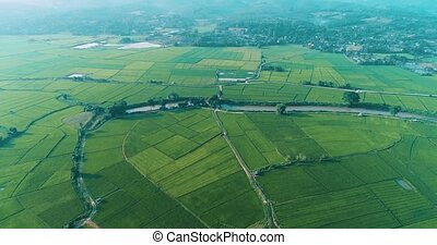 Aerial view of beautiful fields with river in Chiang Rai...
