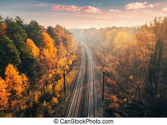 Aerial view of beautiful railroad in autumn forest in fog