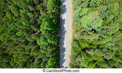 Aerial view of black car driving on road in forest