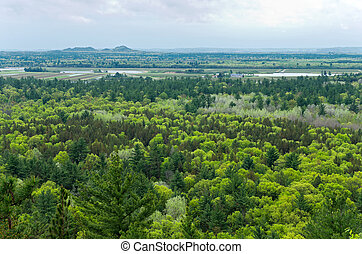 Aerial View of Black River State Forest