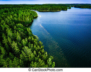 Aerial view of blue lake and green forest in Finland.