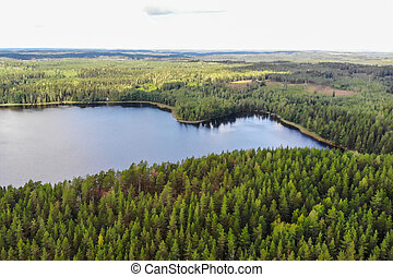 Aerial view of blue lake and green forests on a summer day in Finland. Drone photography