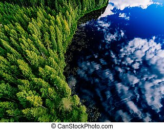 Aerial view of blue lake and green forests on a sunny summer day in Finland.