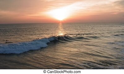 Aerial View of Body Surfer Riding Sunset Ocean Wave. Drone...