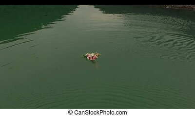 Aerial view of bouquet of roses swims along the green river...