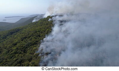 aerial view of burning bushes in the hills, Montenegro