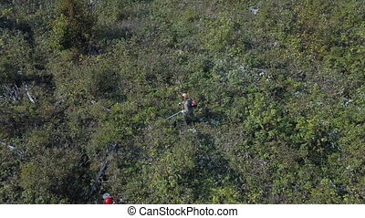 Aerial view of Bushes and weeds is getting sawn by worker ...