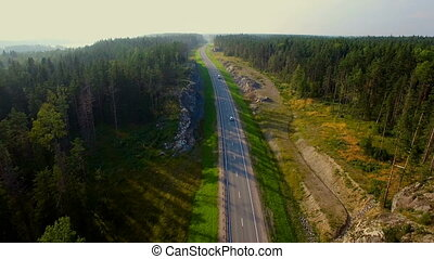 aerial view of car driving on a road in the woods