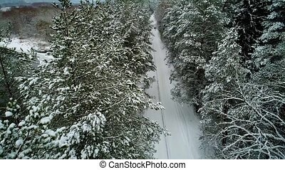 aerial view of car moving in winter forest - aerial view of...