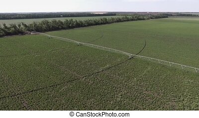 Aerial view of Center Pivot crop Irrigation System on potato...