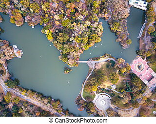 Aerial view of Central park lake in autumn