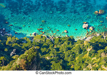Aerial view of coastline with green forest and clear blue sea