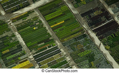 Aerial View of Colorful Patterns in a Nursery