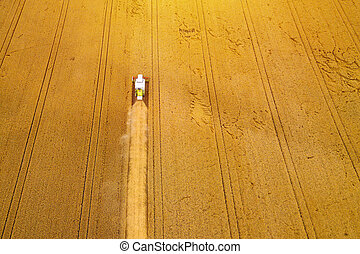 Aerial view of combine harvester harvesting wheat