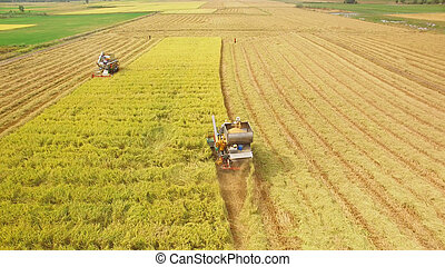 Aerial view of combine on harvest field