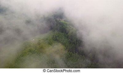 Aerial view of coniferous forest through clouds in a mountainous region of Slovakia, Tatra Mountains