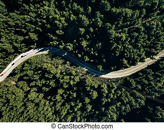 Aerial view of curve road on the mountain with green forest in Greece