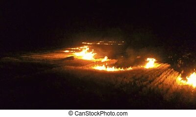 Aerial view of dry grass burning on the farmland in night