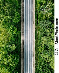 Aerial view of empty road going through green forest.