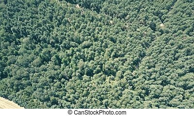 Aerial view of European forest and distant operating wind...