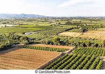 aerial view of farm fields in Tarragona