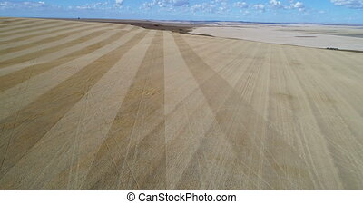 Aerial view of field 4k