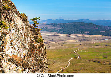 Aerial view of fields, mountains and  road in the countryside, pine on rock