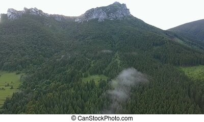 Aerial view of fir forest and rocky hill, Slovakia