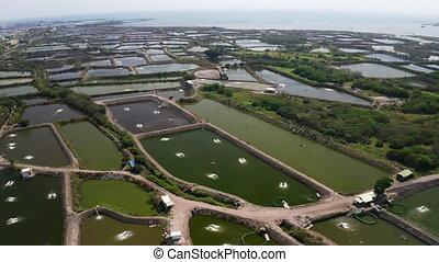 aerial view of fish farm and coast . Taiwan.