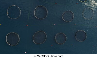 aerial view of fish farm in the bay of Kotor, Montenegro