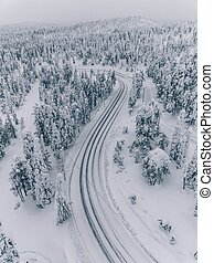 Aerial view of forest covered with snow in Finland, Lapland.