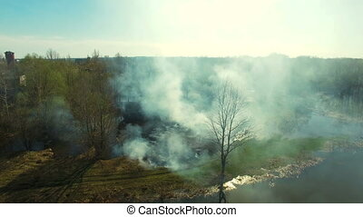 Aerial view of forest fire.