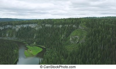Aerial view of forest river during summer. Clip. Aerial view...