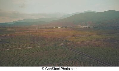 Aerial view of fruit orchards and vineyards in Sierra Nevada...