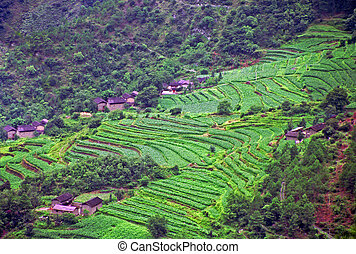 aerial view of generic chinese village
