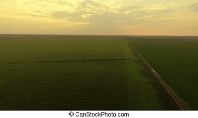 Aerial view of golden sunset on a background of green fields, distancing