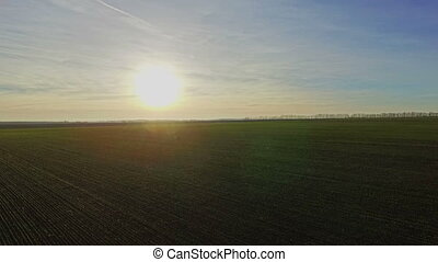 Aerial view of green fields at sunset