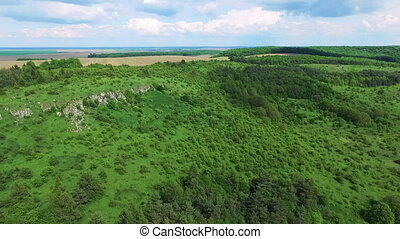 Aerial view of green nature of mountains, hills, trees